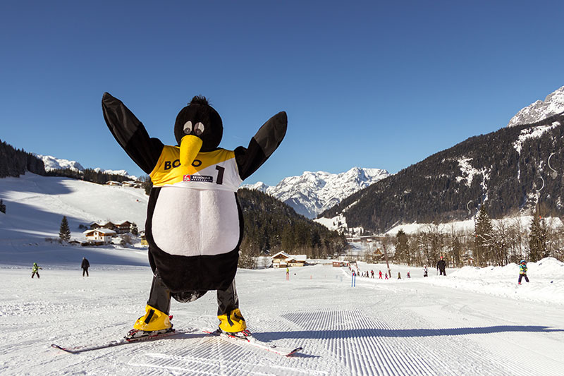 Bobo the Penguin is coming to the PRO ski school in Werfenweng for the winter season.